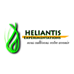 heliantis.png